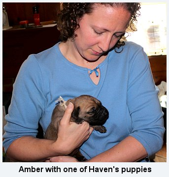 Amber with Haven's puppy